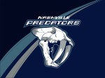 Nashville Predators Ice Hockey Team